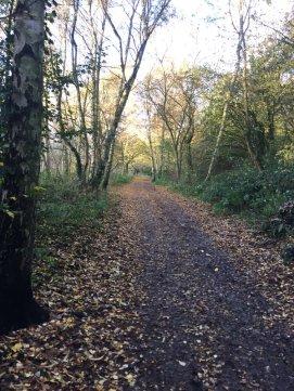 Daventry county park